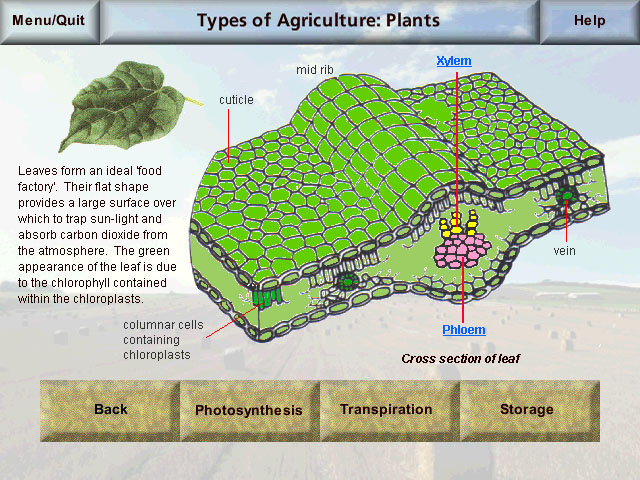 agriculture screenshot